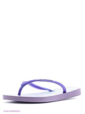 Шлепанцы Havaianas. Цвет: фиолетовый
