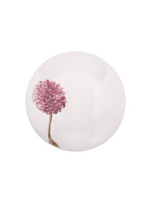 Набор тарелок обеденных ДАЛИЯ 24 см 6 шт Biona. Цвет: белый