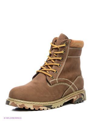 Ботинки Covani. Цвет: коричневый