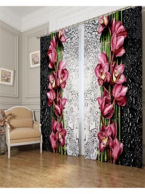 Фотошторы Распустившаяся орхидея Сирень. Цвет: черный, розовый