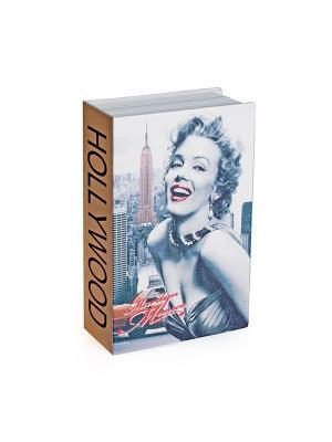 Сейф - книга Hollywood Aztek. Цвет: белый, серый, коричневый