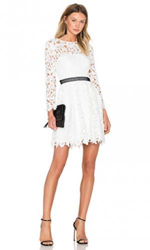 Приталенное и расклешенное платье wild flower Cynthia Rowley. Цвет: белый
