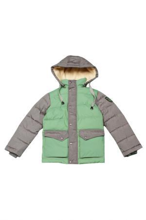 Куртка Arctic Goose. Цвет: pesto, gray melange