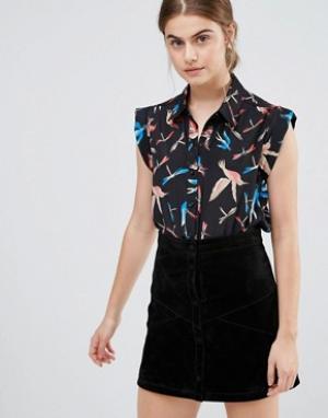 Jasmine Блузка с принтом птиц. Цвет: черный