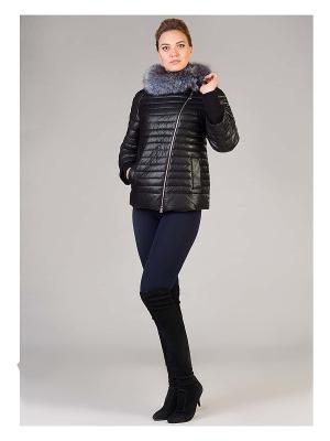 Куртка OSTRICH. Цвет: черный