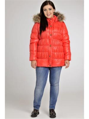 Куртка Modress. Цвет: коралловый