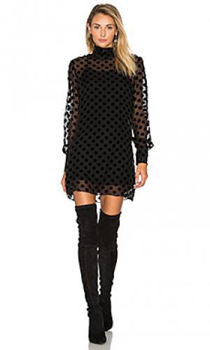 Платье shimo STONE_COLD_FOX. Цвет: черный