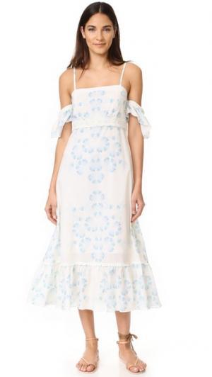 Платье с открытыми плечами Morning Mist Athena Procopiou. Цвет: голубой