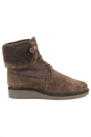 Ботинки Zamagni. Цвет: темно-коричневый