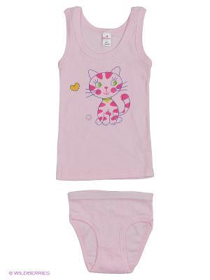 Майка+трусы дев.  ML0109 06 цвет розовый, радуга, кошка Квирит. Цвет: розовый