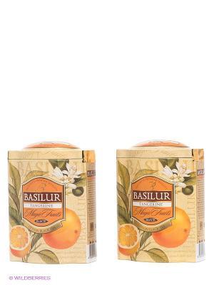 Набор  Чай Basilur ВОЛШЕБНЫЕ ФРУКТЫ Мандарин 100г., 2 шт.. Цвет: зеленый, оранжевый