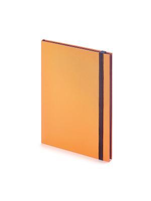 Еженедельник в5 tango (оранжевый) Bruno Visconti. Цвет: оранжевый