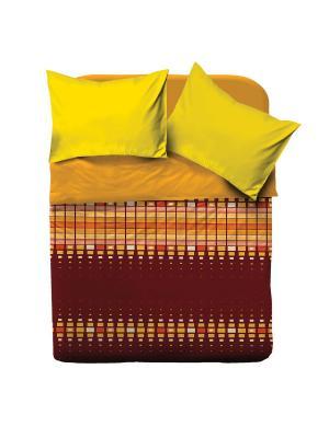 Комплект постельного белья 1.5 Браво Колорс рис.4067-1 Оранж BRAVO!. Цвет: оранжевый, бордовый