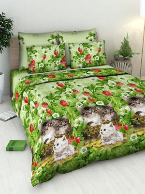 Комплект постельного белья Василиса. Цвет: зеленый, коричневый, красный