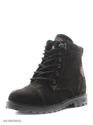 Ботинки GassA. Цвет: коричневый