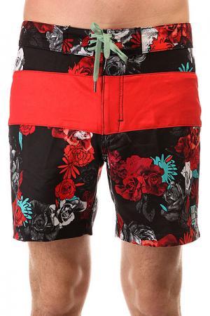 Шорты пляжные  Bloom Rays Floyd Black Insight. Цвет: черный,красный