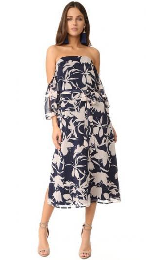 Сад платье с открытыми плечами Talulah. Цвет: мульти