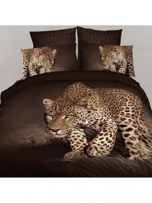 Постельное белье Safari 2,0 сп. Buenas Noches. Цвет: коричневый, черный