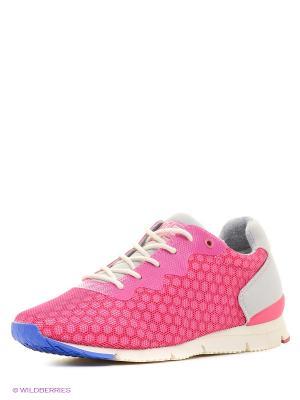 Кроссовки NAPAPIJRI. Цвет: розовый