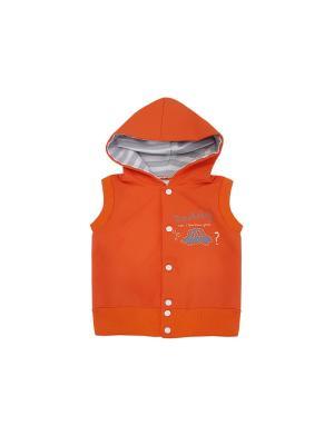 Жилет NewStar. Цвет: серый, молочный, оранжевый