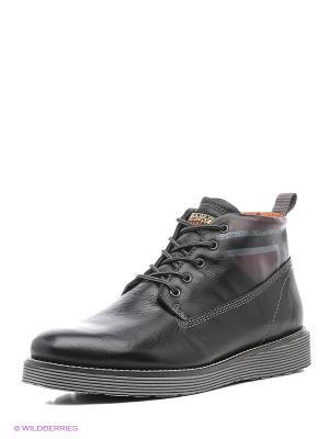 Ботинки NAPAPIJRI. Цвет: черный