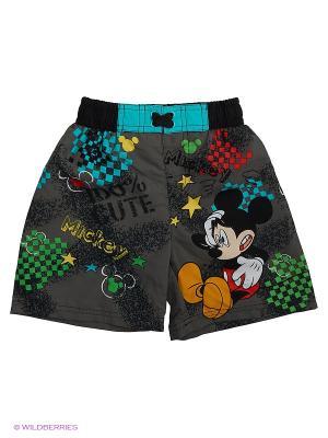 Бордшорты Disney. Цвет: темно-серый, антрацитовый