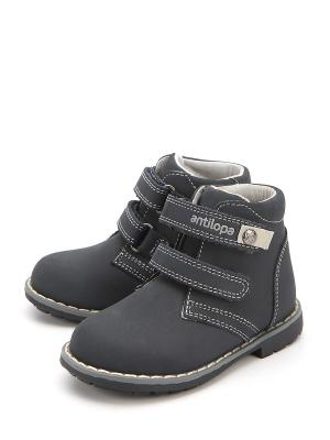 Ботинки Антилопа. Цвет: синий