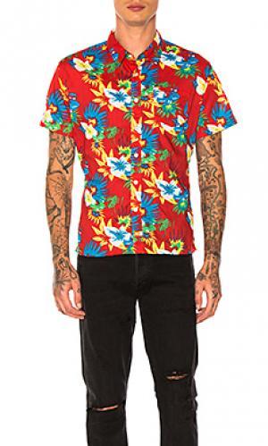 Рубашка на пуговицах frawl Ambsn. Цвет: красный