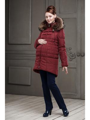 Куртка DIDILIYA. Цвет: бордовый