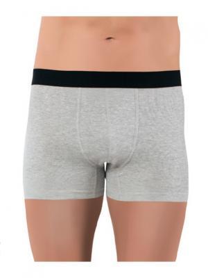 Трусы мужские Oztas underwear. Цвет: светло-серый