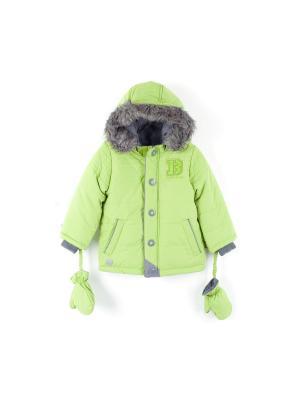 Куртка Coccodrillo. Цвет: зеленый