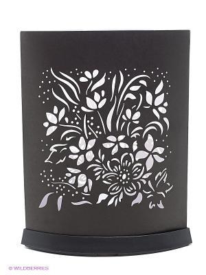 EXPETRO Лайткрытка овальная цветочная Экспетро. Цвет: черный
