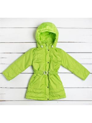 Пальто Arctic Kids. Цвет: салатовый