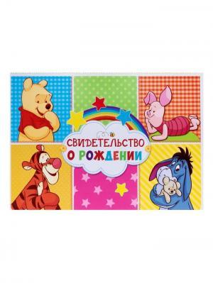 Папка для свидетельства о рождении А5 горизонтальная Медвежонок Винни и его друзья Disney. Цвет: светло-зеленый,фиолетовый,желтый