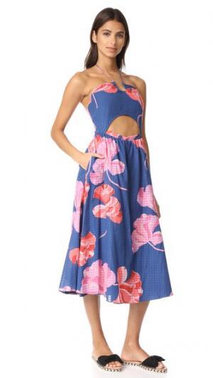 Платье Fan Fatima в клетку с цветочным принтом Tanya Taylor. Цвет: васильковый/розовый
