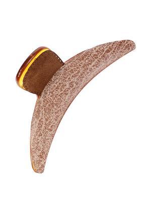 Краб Migura. Цвет: бежевый, коричневый