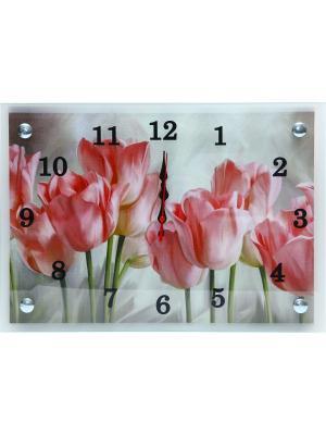 Настенные часы Тюльпаны 25х35 В1506 PROFFI. Цвет: розовый