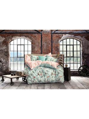 Комплект постельного белья IDOLE сатин, 200ТС, 100% хлопок, евро ISSIMO Home. Цвет: бирюзовый