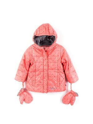 Куртка Coccodrillo. Цвет: коралловый