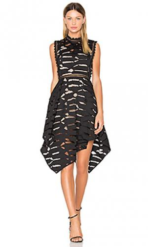 Платье ascot Acler. Цвет: черный