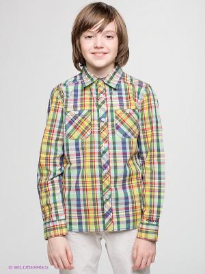 Рубашка GEOX. Цвет: зеленый, салатовый, желтый, синий
