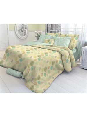 Комплект постельного белья ЕВРО, VEROSSA,  наволочки 70*70см и 50*70см, Faliant Verossa. Цвет: зеленый, темно-бежевый, терракотовый
