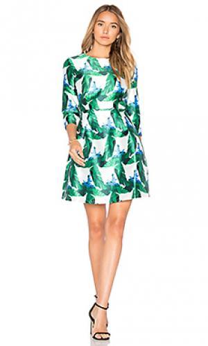 Приталенное расклёшенное платье BLAQUE LABEL. Цвет: зеленый