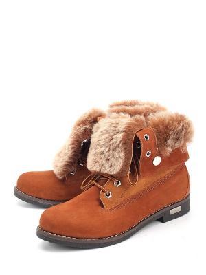 Ботинки SPECTRA. Цвет: коричневый