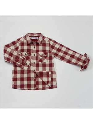 Рубашка MINOTI. Цвет: бордовый