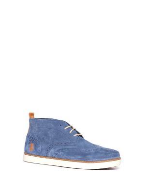 Ботинки U.S. Polo Assn.. Цвет: голубой