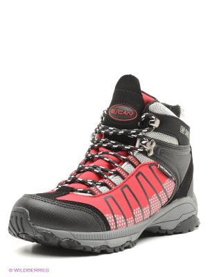 Ботинки Escan. Цвет: черный, малиновый