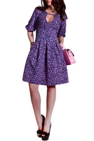 Платье FRANCESCA LUCINI. Цвет: фиолетовый, незабудки