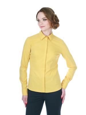Блузка BLAUZ. Цвет: горчичный