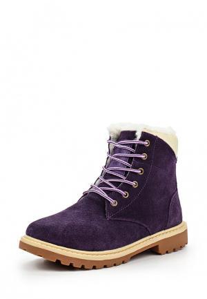Ботинки Shuzzi. Цвет: фиолетовый